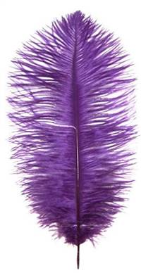 "Ostrich Drabs 14-16"" Dyed Purple - Per 1/2 lb"