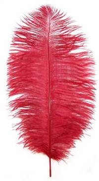"Ostrich Drabs 14-16"" Dyed Red - Per 1/2 lb"