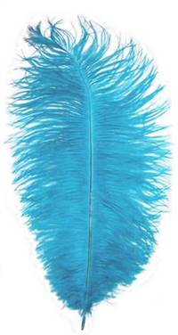"Ostrich Drabs 14-16"" Dyed Turquoise - Per 1/2 lb"