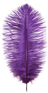 "Ostrich Drabs 19-22"" Dyed Purple - Per 1/2 lb"