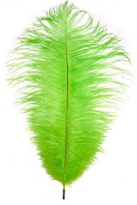 "Ostrich Drabs 9-13"" Dyed Lime - Per 1/2 lb"