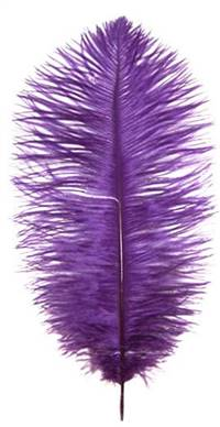 "Ostrich Drabs 9-13"" Dyed Purple - Per 1/2 lb"