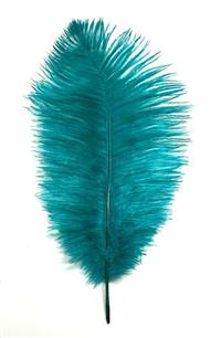 "Ostrich Drabs 9-13"" Dyed Teal - Per 1/2 lb"
