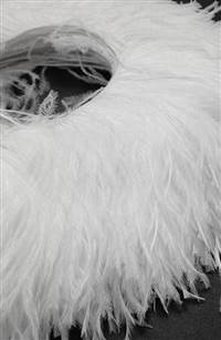 "Ostrich Feather Fringe 5-6"" Snow White - 2 Yards"