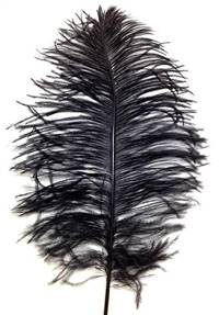 "Ostrich Tail Feathers 14-17"" Dyed Black - Per 1/2 lb"