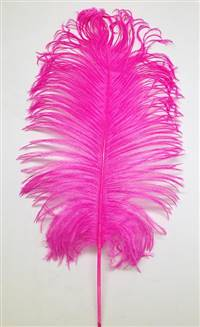 "Ostrich Tail Feathers 14-17"" Dyed Fuchsia - Per 1/2 lb"