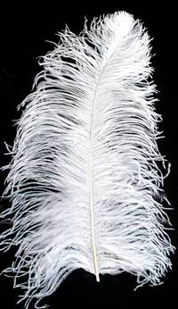 "Ostrich Wing Plumes #1 - 16-18"" Bleached White - Per 1/4 lb"