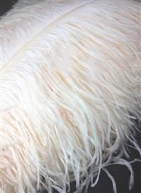 "Ostrich Wing Plumes #1 - 18-24"" Dyed Cream - Per 1/4 lb"