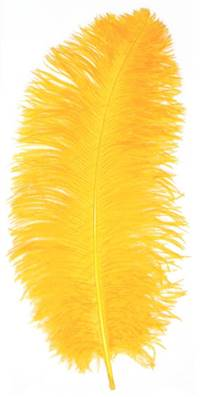 "Ostrich Wing Plumes #1 - 18-24"" Dyed Gold - Per 1/4 lb"