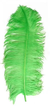 "Ostrich Wing Plumes #1 - 18-24"" Dyed Lime - Per 1/4 lb"