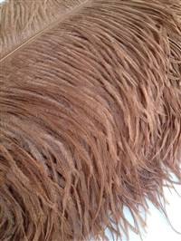 "Ostrich Wing Plumes #1 - 18-24"" Dyed Light Brown - Per 1/4 lb"