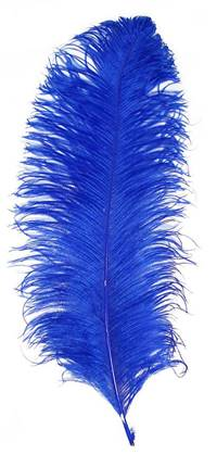 "Ostrich Wing Plumes #1 - 17-22"" Dyed Royal Blue - Per 1/4 lb"