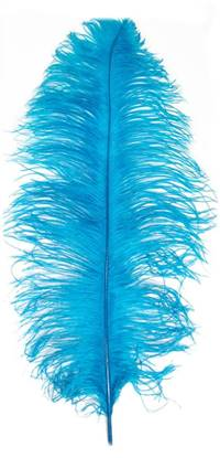 "Ostrich Wing Plumes #1 - 18-24"" Dyed Turquoise - Per 1/4 lb"