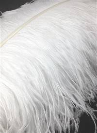 "Ostrich Wing Plumes #1 - 18-21"" Bleached White - Per 1/4 lb"