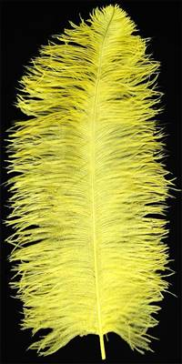 "Ostrich Wing Plumes #1 - 18-24"" Dyed Yellow - Per 1/4 lb"