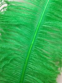 "Ostrich Wing Plumes #2 - 25-29"" Dyed Light Green  - Per 1/4 lb"
