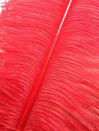 "Ostrich Wing Plumes #2 - 25-29"" Dyed Red - Per 1/4 lb (About 20 pcs)"