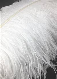 "Ostrich Wing Plumes #1 - 28-32"" Bleached White - Each"