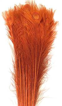 "Eyed Peacock Sticks 35-40"" Dyed Orange over Bleached - Per 100"