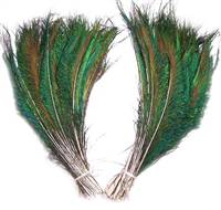 "Peacock Swords Cut 12-14""  - Per 100 Feathers"