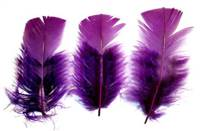 "Loose Turkey T-Base 3-5"" Dyed Purple - Per lb"