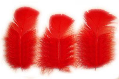 "Loose Turkey T-Base 3-5"" Dyed Red - Per lb"