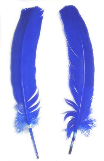Turkey Rounds Dyed Royal Blue - Per lb