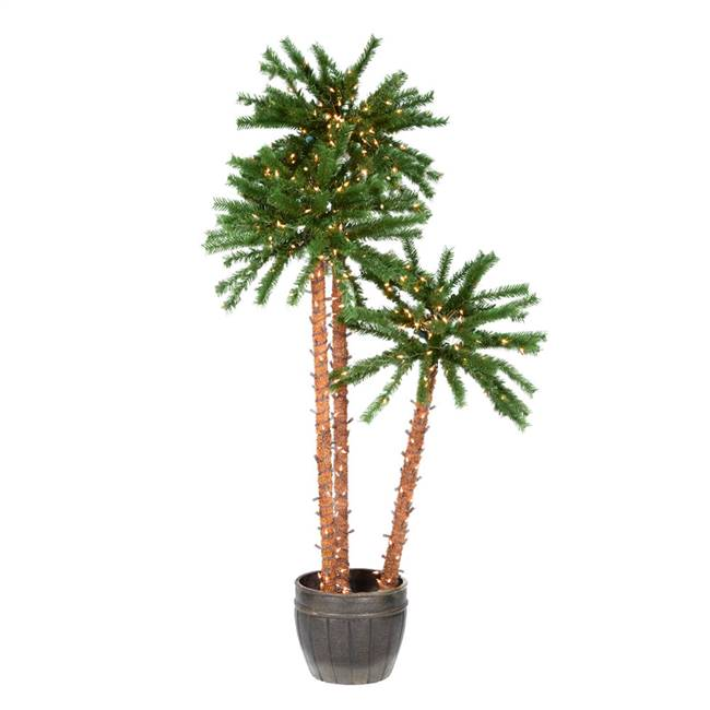 4-5-6' Potted Outdoor Palm Trees 500CL