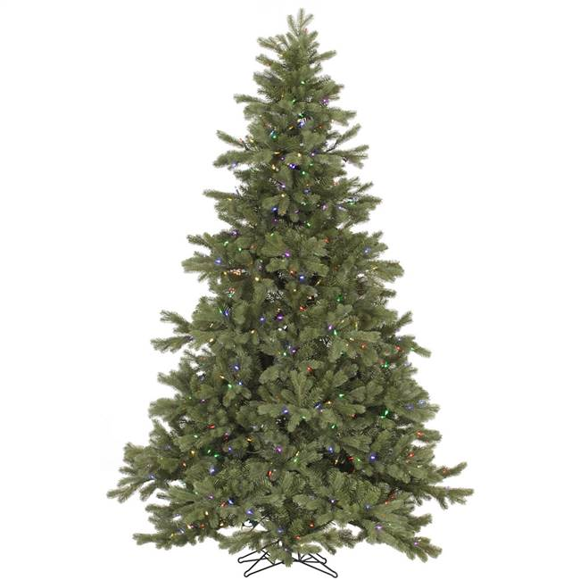 "4.5' x 39"" Frasier Fir 250Multi Led"