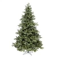 "14' x 107"" Frasier Fir 8128 Tips"
