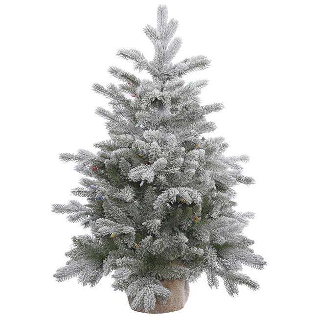 "36"" x 28"" Frosted Sable Pine Tree 206T"