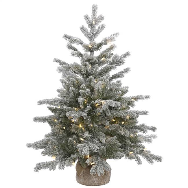 "36"" x 28"" Frosted Sable Tree 100LED WmWt"