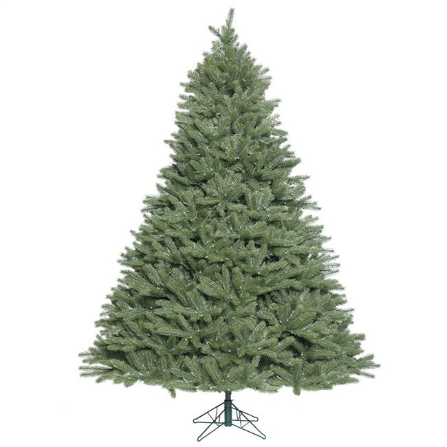 10' x 82'' Colorado Spruce 5406Tips