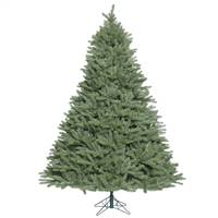 14' x 106'' Colorado Spruce 11310Tips