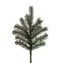 "18"" x 12T Colorado Spruce Spray 12/Box"