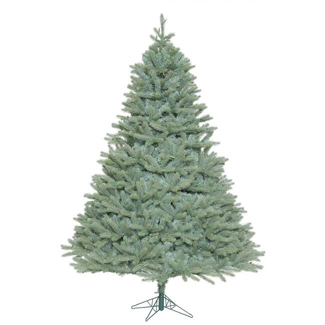 10' x 82'' Colorado Blue Spruce 5406Tips