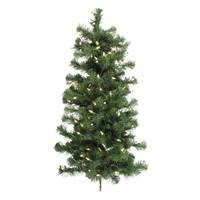 "3' x 21"" Douglas Wall Tree 100WmWh LED"