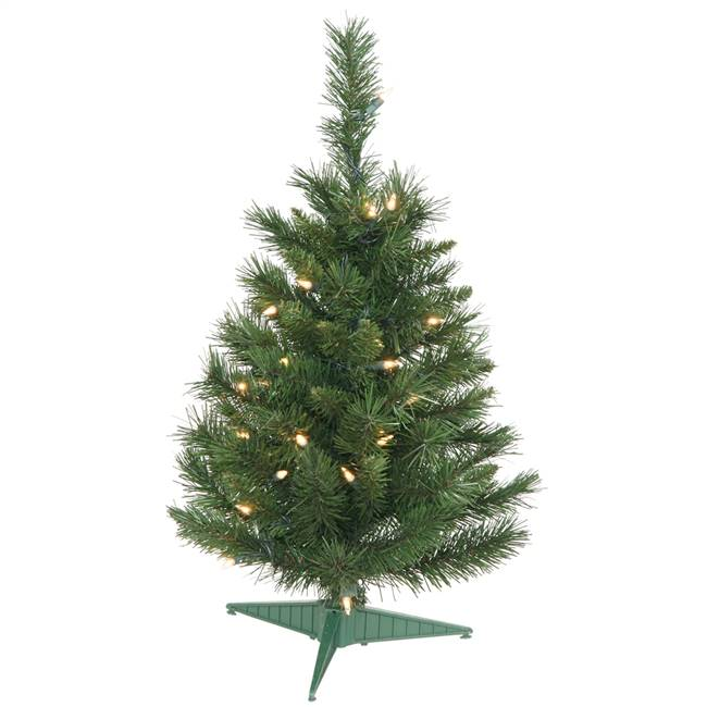 "24"" Imperial Pine Tree 50 Clear 72T"