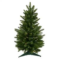 "24"" x 16"" Frasier Fir Dura-Lit 50CL 90T"