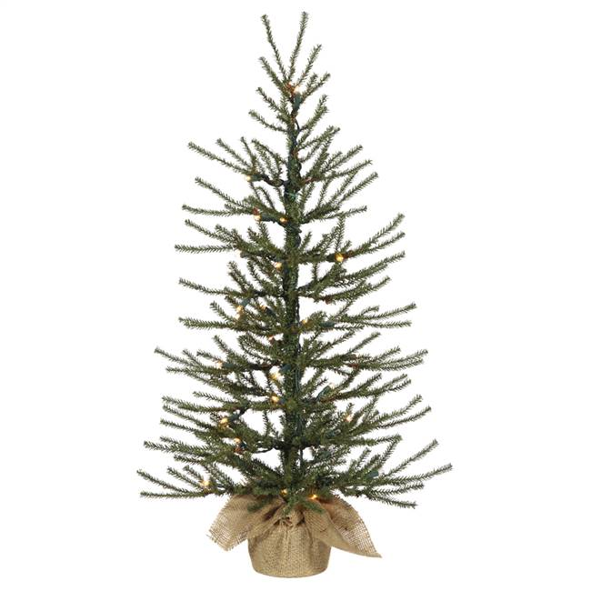 "36"" x 18"" Angel Tree Dural LED 50WmWht"