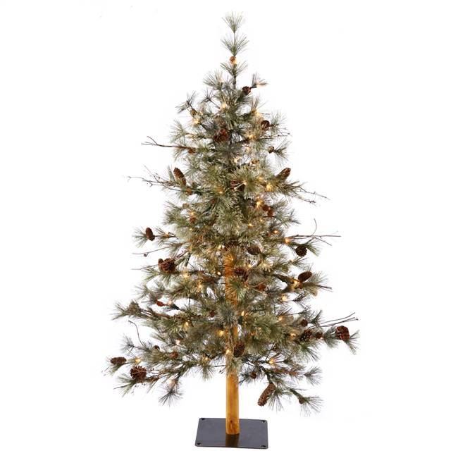 "6' x 36"" Dakota Alpine Tree Dural 150CL"