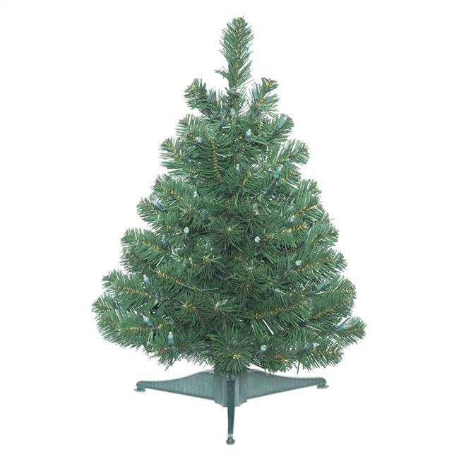 "26"" x 19"" Oregon Fir Tree 65 Tips"