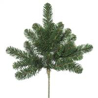 "18"" Oregon Fir Spray x 7Tips"