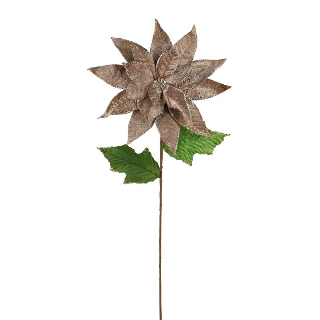 "24"" Poinsettia Stem Mocha 3/Bag"