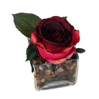 "6"" Red Rose /Glass Square"