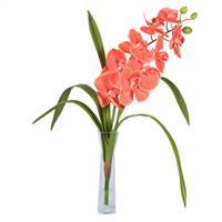 "22"" Orange Orchid in Vase"