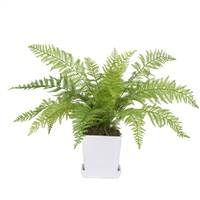 "17"" Fern in Matte Planter"