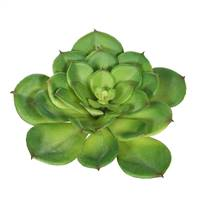 "7"" Single Cactus-Green (Pk/3)"