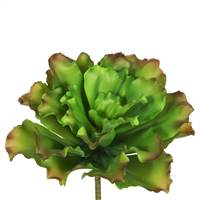"9"" Big Romaine-Green/Brown (Pk/3)"