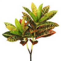 "23"" Real Touch Green Croton"